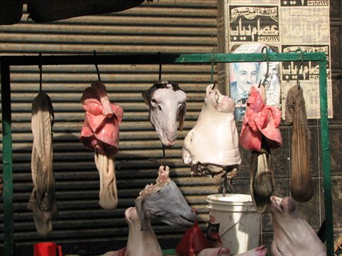 Random shots of the streets of Cairo - Mmmmmm...yummy.