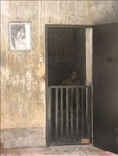 Saigon: War Remnants museum: by colleen_finn, Views[302]