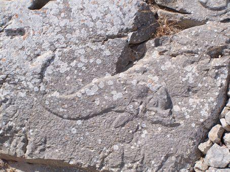 Ancient Thira - rock engraving of dolphin (Santorini)