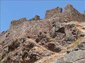 Citadel ruins on Pisac: by colleen_finn, Views[242]