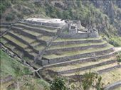 Winawayna Inca ruins: by colleen_finn, Views[187]
