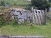 Dartmoor: by copperowl, Views[69]