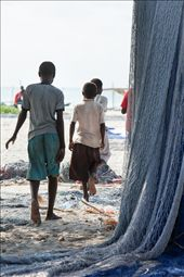 The younger boys finish hanging the nets out to dry.: by cotomono, Views[248]
