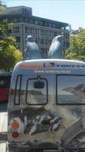 Christchurch: by courtneycarmen, Views[89]