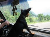 my driver from vang vieng to luang prabang: by courtneyjane411, Views[182]