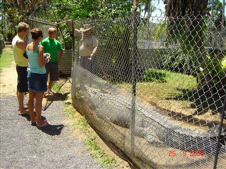 Vierailu krokotiilifarmilla