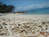 Nudey beach on kokonaan korallimurskaa. Fitzroy Island.: by crazyfinns, Views[1526]