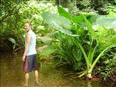 Seikkailua viidakossa, Koh Lanta: by crazyfinns, Views[317]