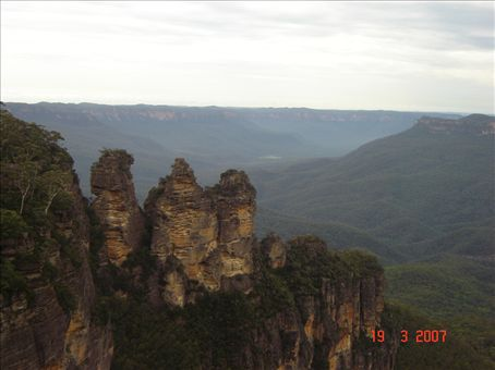 Tree Sisters, Blue Mountains