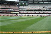 Turf is my praying rug: by cricket, Views[68]