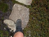 My boots walking over the stepping stones: by crjcarrie, Views[166]