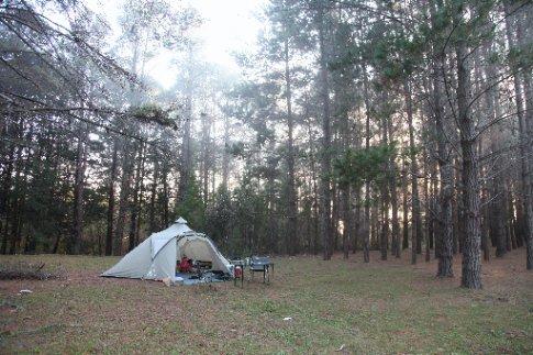 Campsite, Wingello State Forest.