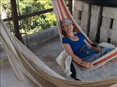 Mona Relaxes in hammocks at our hotel terrace : by cubannomad, Views[169]