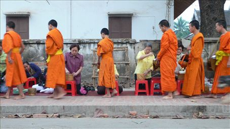 Every morning 6:30: People offer food to the monks in Luang Prabang.