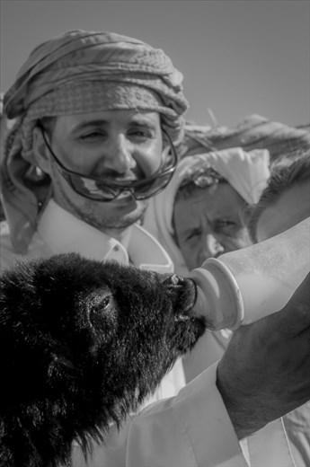 Bedouins feeding a little goat