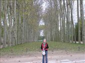 Nell at Versailles: by dale_ireland, Views[194]
