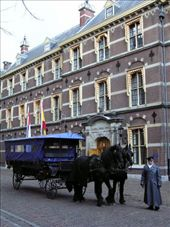 Traditional horse and carriage in The Hague: by dale_ireland, Views[339]
