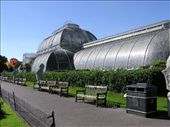 One of the massive hot houses in Kew Gardens: by dale_ireland, Views[794]