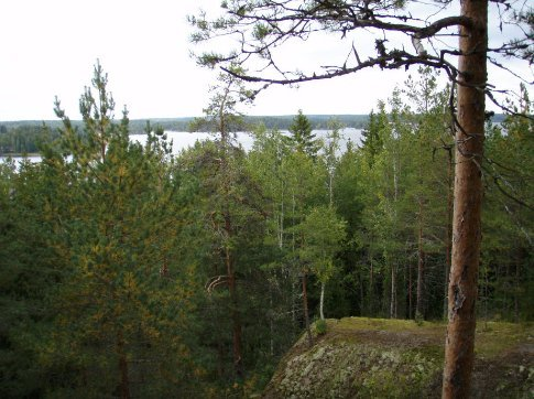 A view of Lake Saimaa from the forest