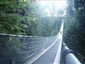 Looking back across the bridge.  Originally built with hemp rope and cedar planks in 1889, it stretches 450 feet across and 230 feet above Capilano River.: by dan_and_stef, Views[155]
