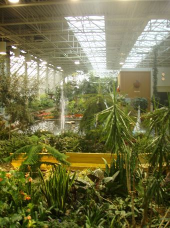Devonian Gardens located on the roof (enclosed thankfully) of a mall in the city