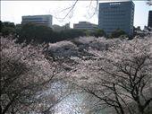 by dan_in_japan, Views[609]