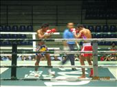 Muay Thai: by dan_in_japan, Views[440]