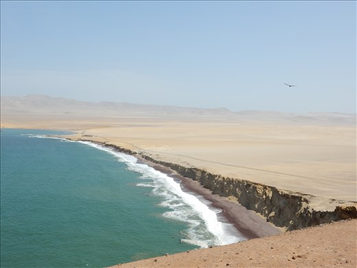 Great lookout point where the ocean meets the desert.