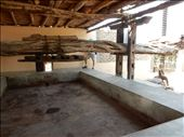 Visited a pisco distillery in Ica, Peru called El Catador that still makes it the old fashioned way. Here is the area where the grapes are stomped with bare feet.then pressed. : by danidawnandstevo, Views[208]