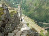 On our way up Waynapicchu's