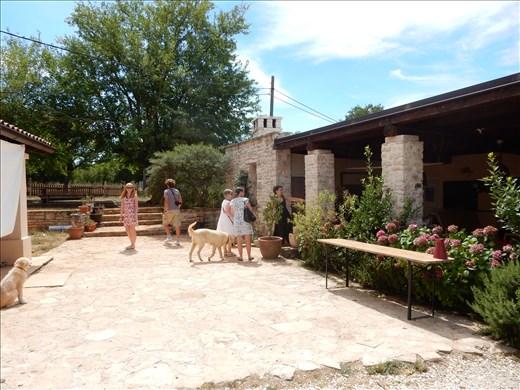 Tour of goat cheese farm in Istria.