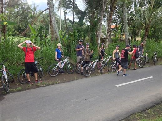 Group bike ride around Bali.