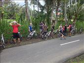 Group bike ride around Bali. : by danidawnandstevo, Views[181]