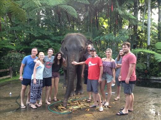 Elephant Park Bali