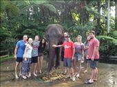 Elephant Park Bali: by danidawnandstevo, Views[143]