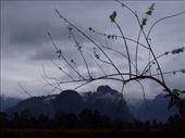 by danielle, Views[156]