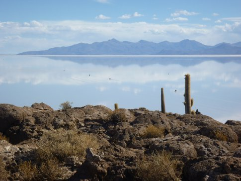 Cars driving on the Salar