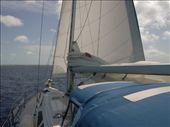 Main sail: by dannygoesdiving, Views[306]