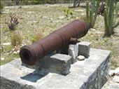 Cheshire Hall Plantation - one of the cannons discovered: by dannygoesdiving, Views[534]
