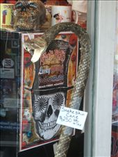 Memphis - Beale Street, fancy a genuine 'snake cane' ?: by dannygoesdiving, Views[282]