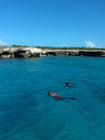snorkelling of course