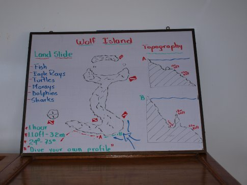 Dive plan at Wolf