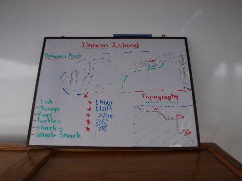 Darwin Dive Plan (& promise)