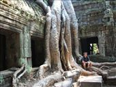 Me, relaxing by the 'Lara Croft' tree - Ta Prohm, Ankor: by dannygoesdiving, Views[558]
