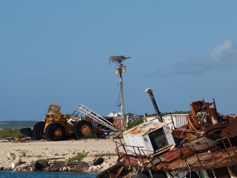 Osprey Nest (Shipyard)