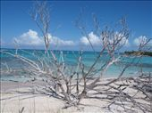 Little Water Cay: by dannygoesdiving, Views[285]