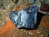 Rio De Janeiro Maru - remains of  a book: by dannygoesdiving, Views[266]