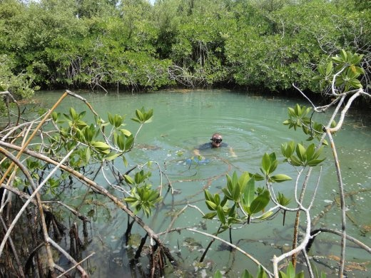 Jon in Mangrove Pond