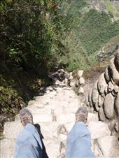 Machu Picchu - Ince steps down from Wayna Picchu: by dannygoesdiving, Views[336]