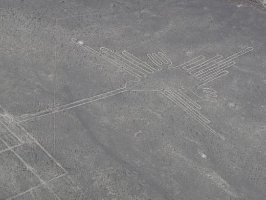 Nazca - Nazca Lines - hummingbird